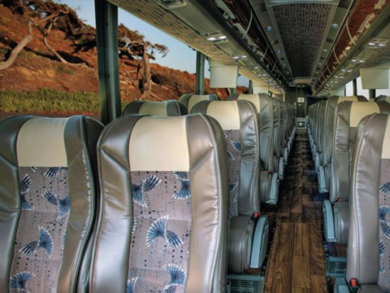 Plush reclining seats for every passenger - Limousine Boulder